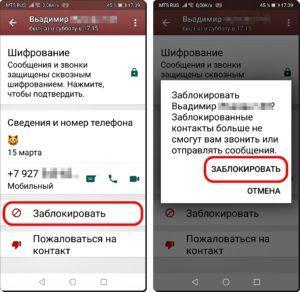 13 и 14 Невидимка в WhatsApp