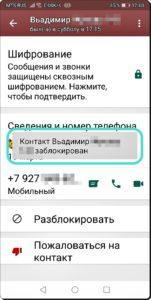 15 Невидимка в WhatsApp