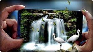 Коллаж с птицами.